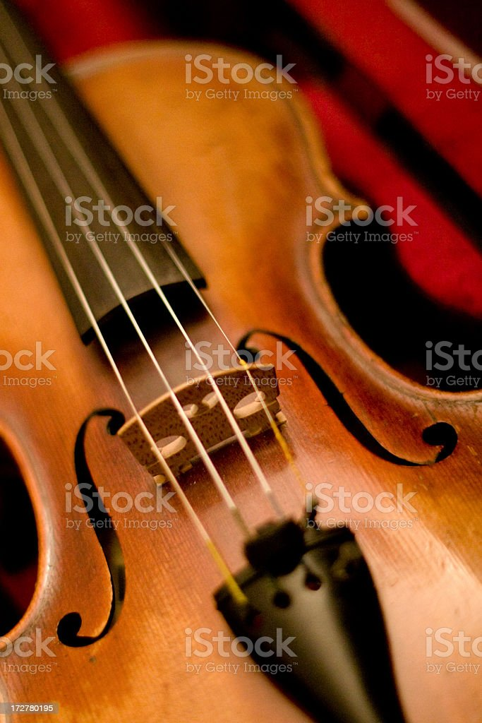 Italian Violin royalty-free stock photo