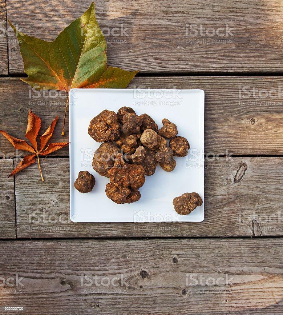 Italian white truffles stock photo