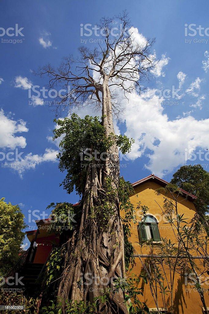 Italy house style royalty-free stock photo
