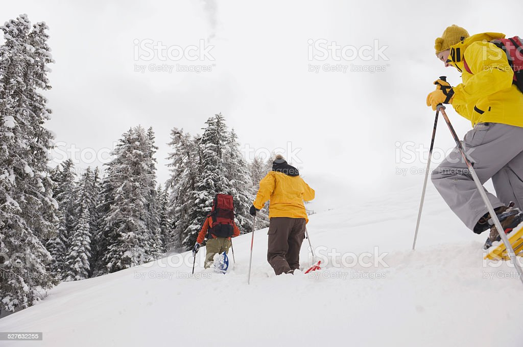 Italy, South Tyrol, Young people snowshoeing stock photo