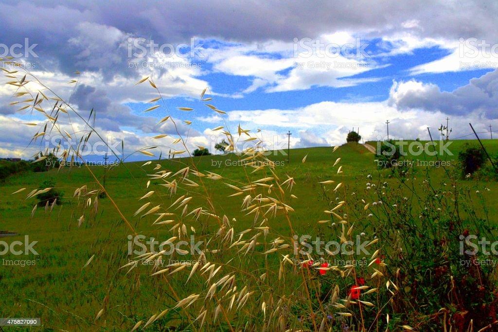 Italy's nature stock photo