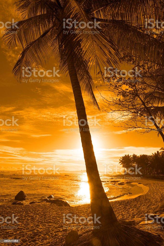 Itapua Beach in Salvador, Bahia stock photo