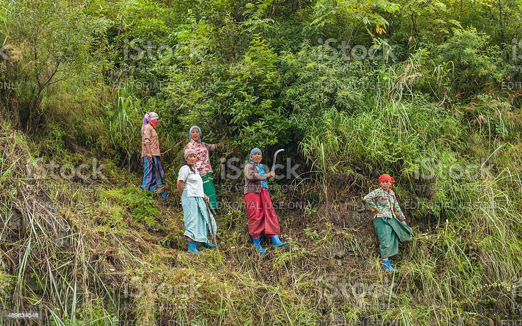 Itinerant road construction workers, Dirang, Arunachal Pradesh, India. stock photo