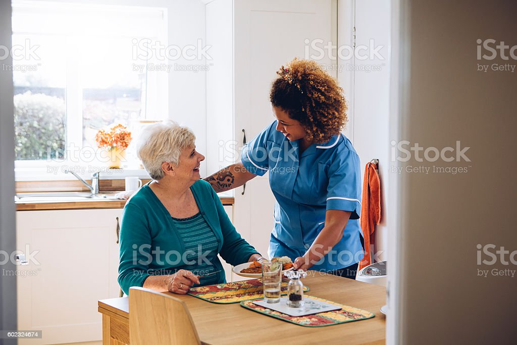 It's Dinner Time! stock photo
