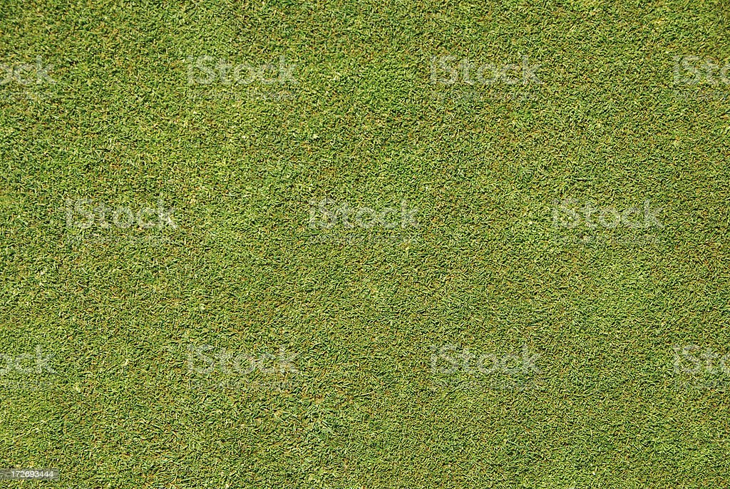 It's grass royalty-free stock photo