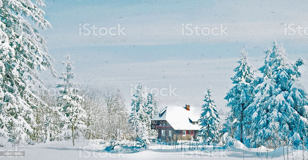 it's snowing in the Black Forest stock photo