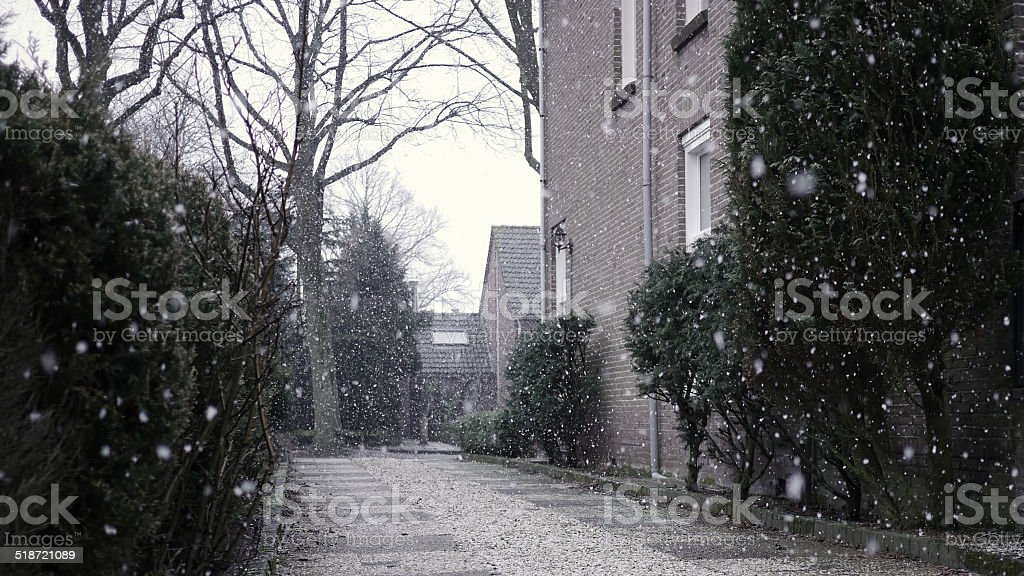 It's snowing on a boring grey cold day royalty-free stock photo