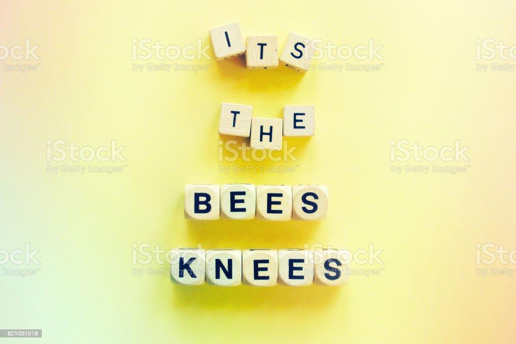 It's the Bee's Knee's stock photo