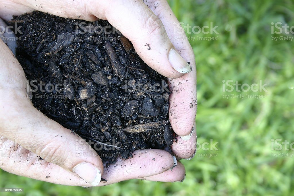 It's the Soil royalty-free stock photo
