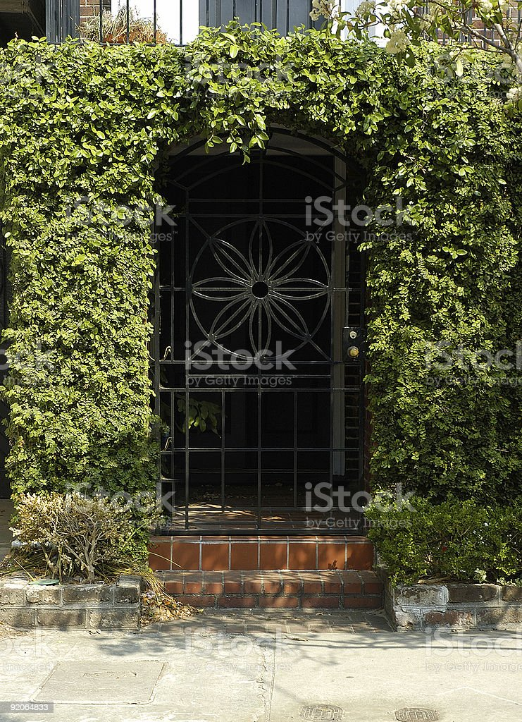 ivy covered black iron gate royalty-free stock photo