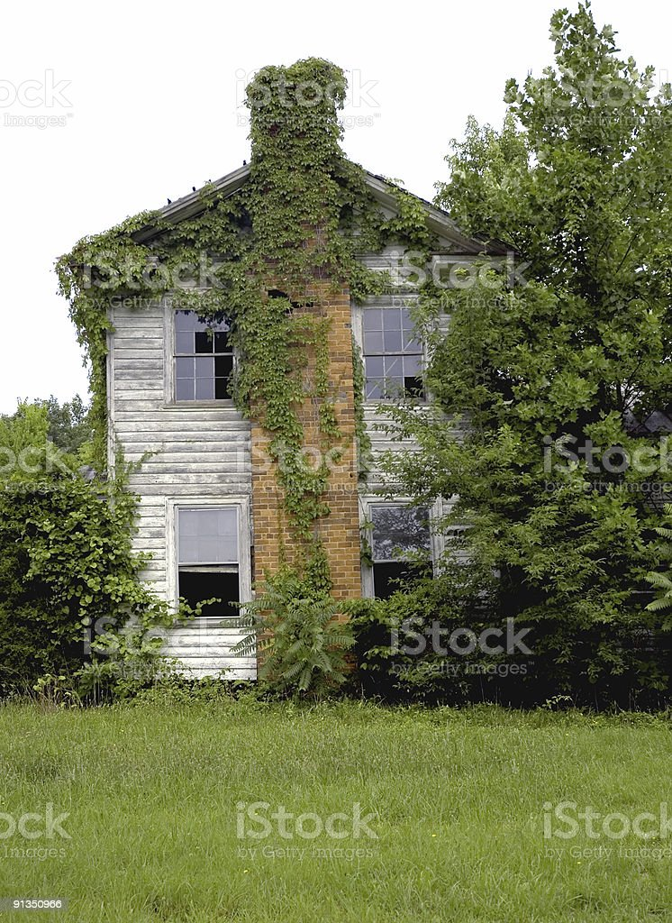 Ivy covered Brick Chimney and Old Farm House royalty-free stock photo