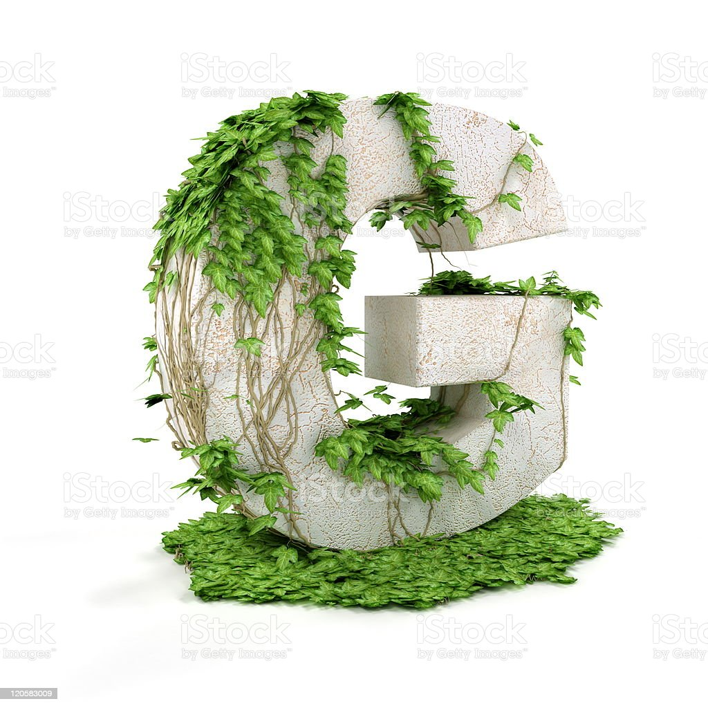 Ivy letter G isolated on white background. stock photo