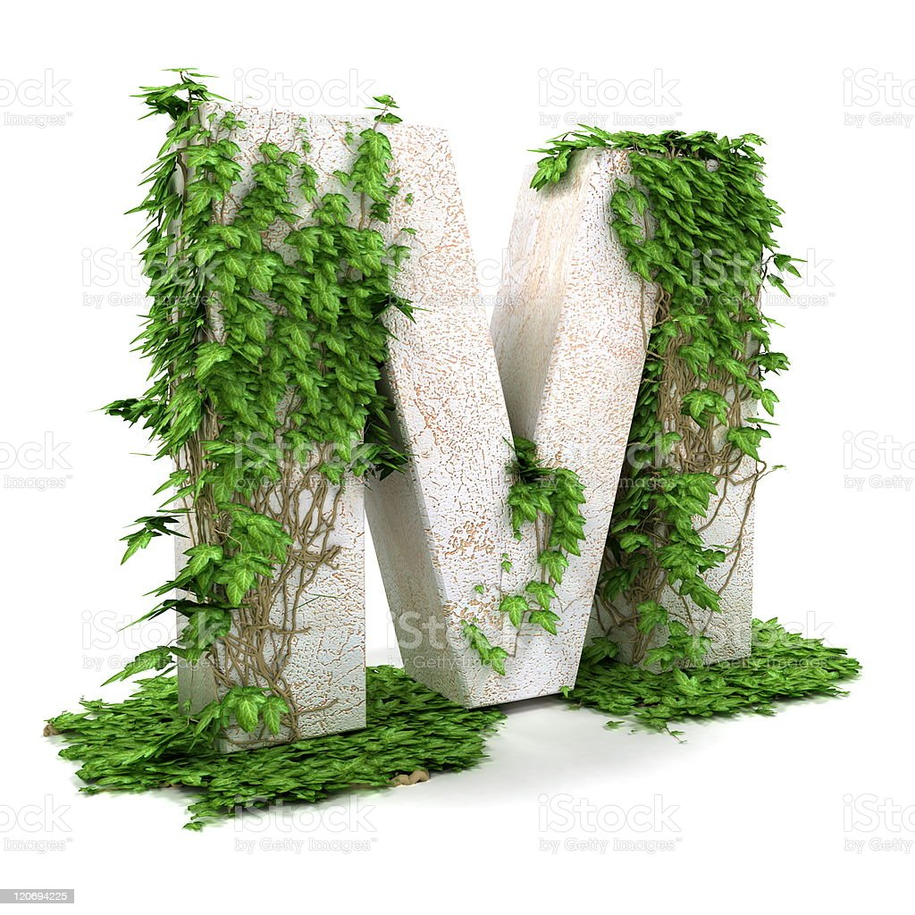 Ivy letter M isolated on white background. royalty-free stock photo