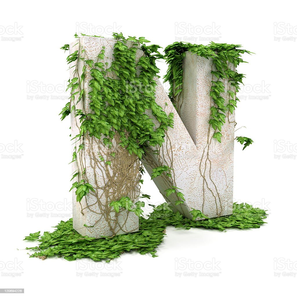 Ivy letter N isolated on white background. royalty-free stock vector art