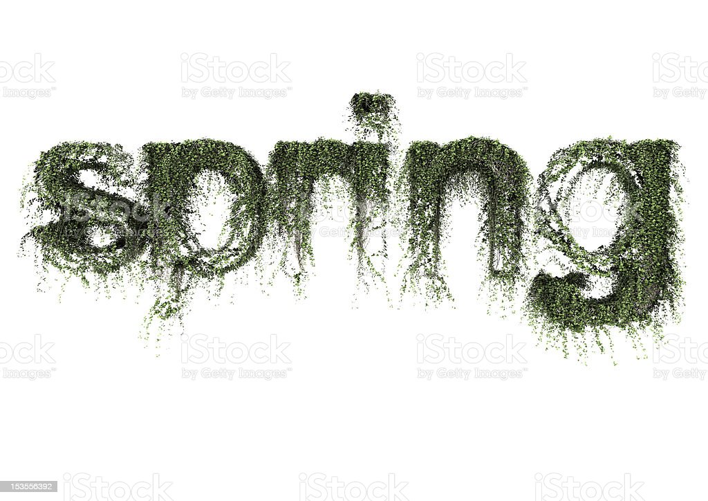 Ivy spring text royalty-free stock photo