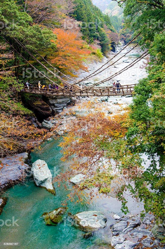 Iya valley and Kazurabashi bridge, Tokushima, Shikoku, Japan stock photo