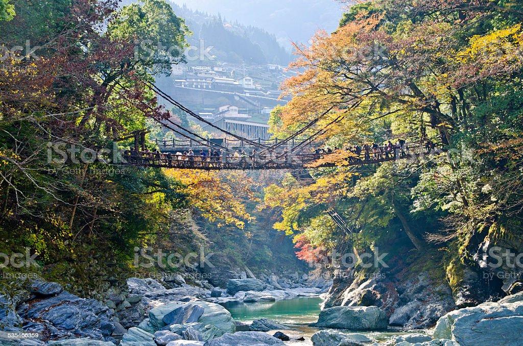 Iya valley and Kazurabashi vine bridge stock photo
