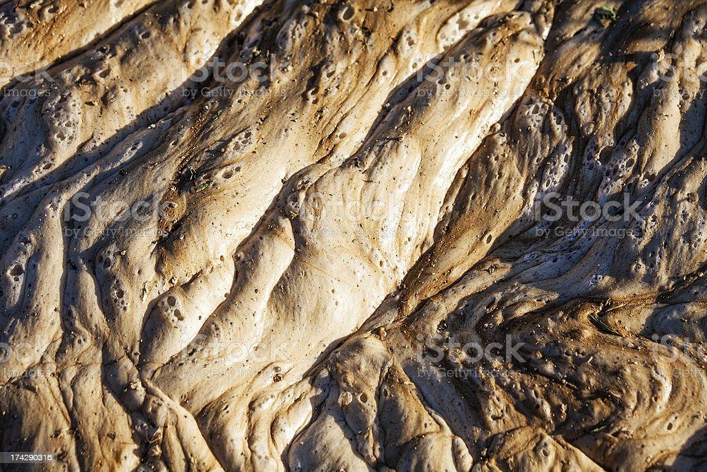 Jabba Skin Texture royalty-free stock photo