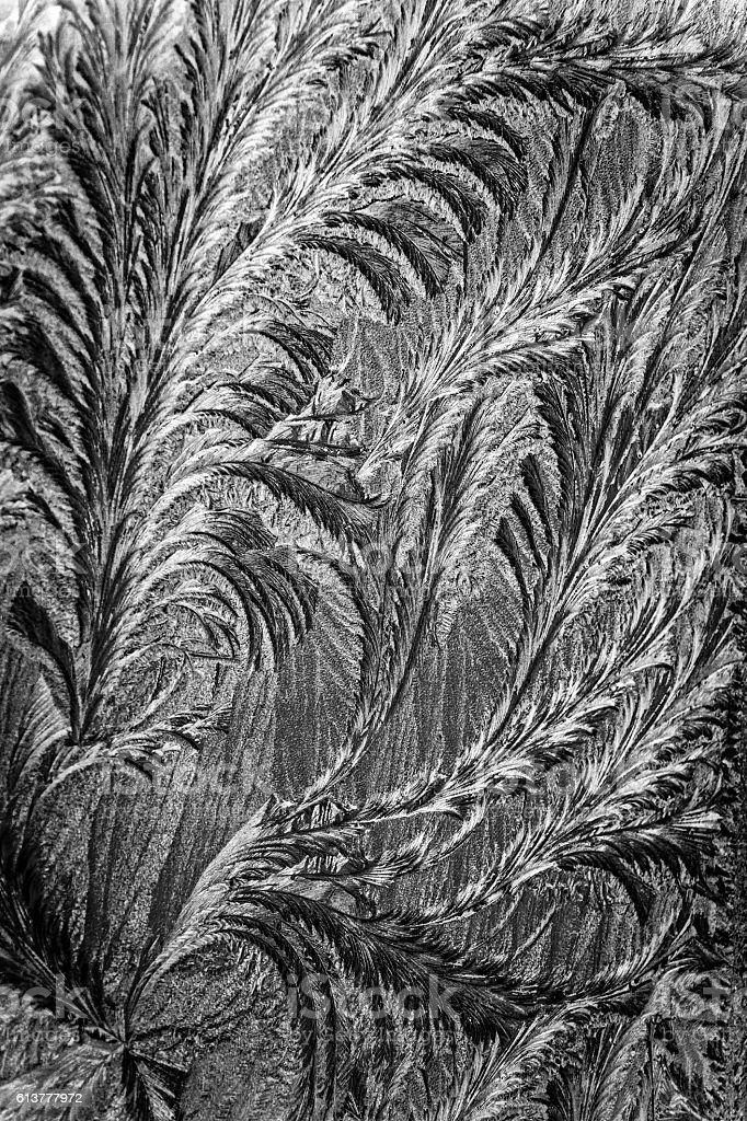 Jack frost etching beautiful pattern stock photo