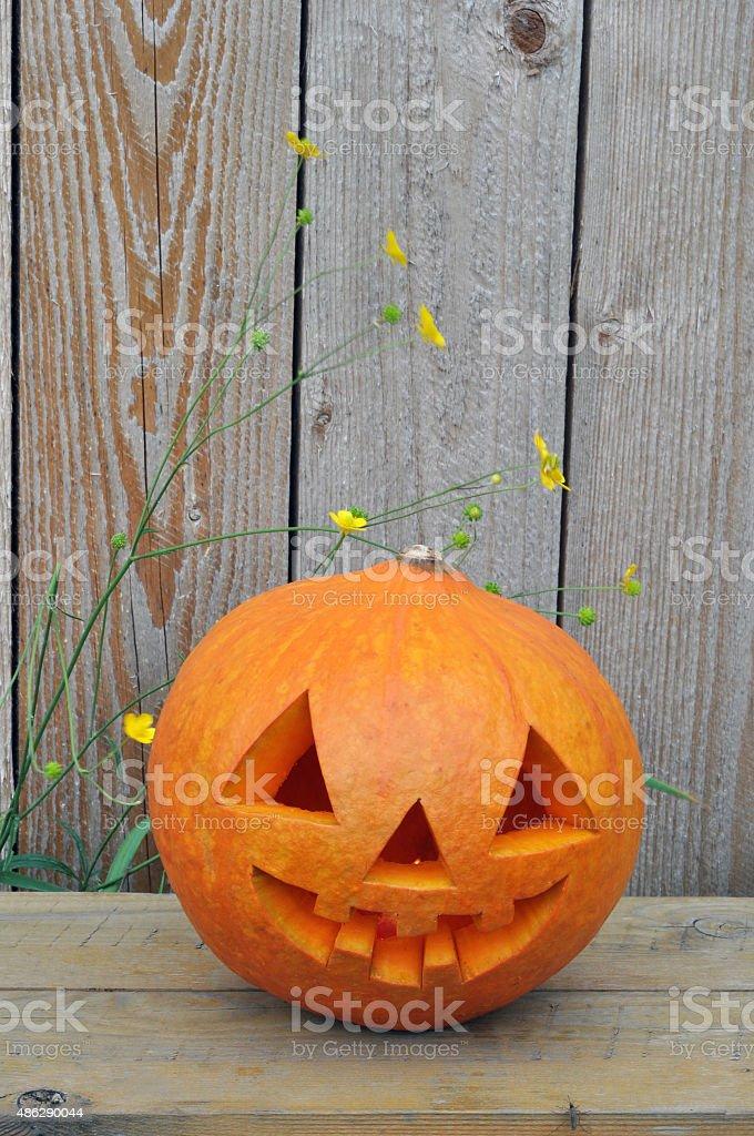 Jack O Lantern on a wooden bench stock photo