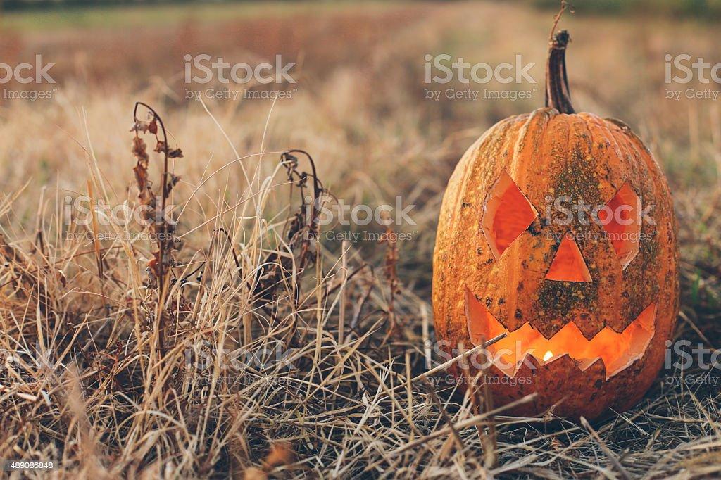 Jack O' Lantern stock photo