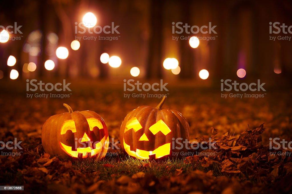 jack o lantern stock photo