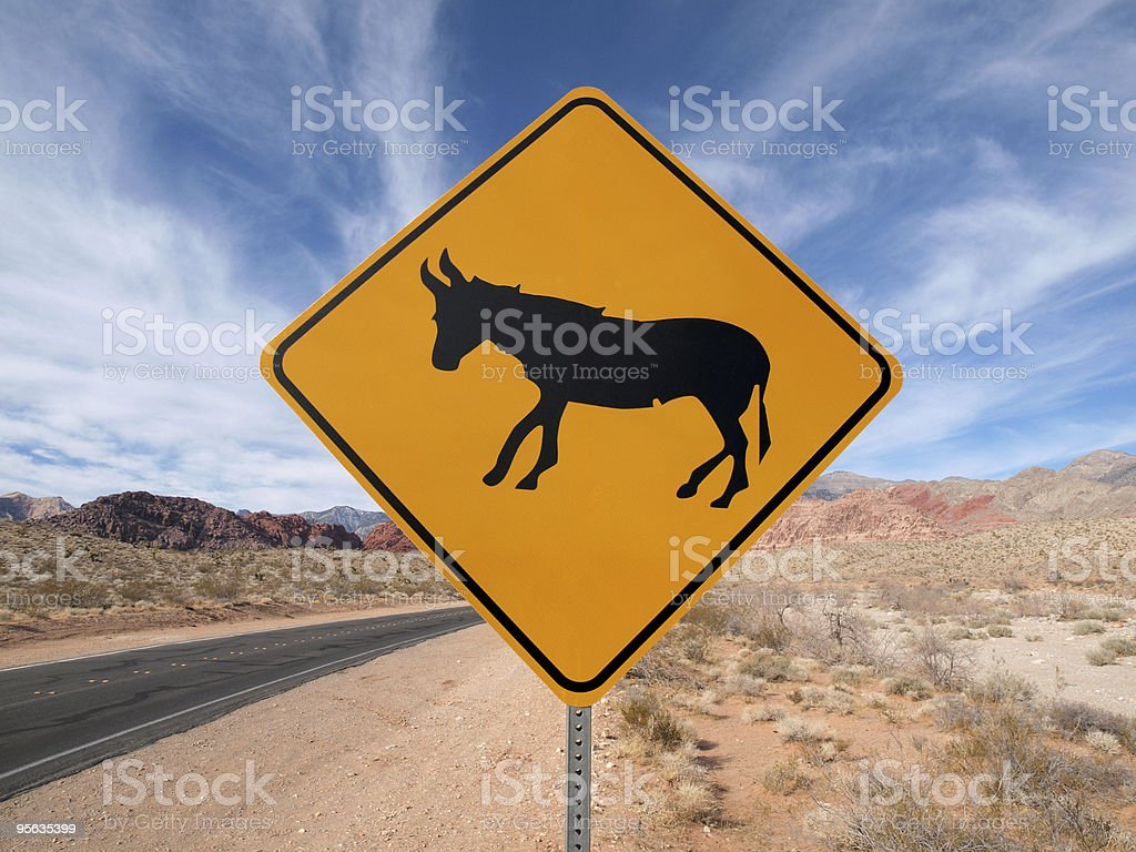 Jackass On The Loose royalty-free stock photo