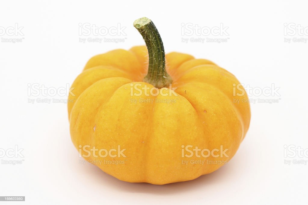 Jack-Be-Little Pumpkin stock photo