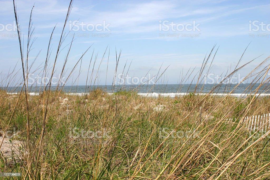 Jacksonville Beach, Florida royalty-free stock photo