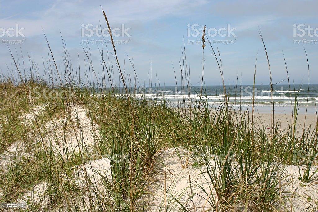 Jacksonville Beach,Florida royalty-free stock photo
