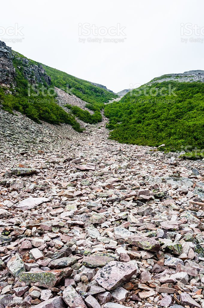Jagged rubble of rocks between bushes on mountain stock photo