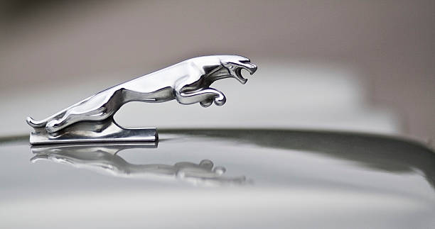 jaguar car bonnet ornament stock photo