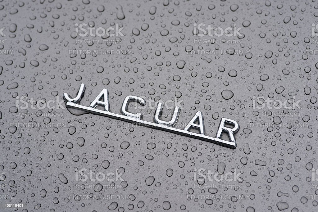 Jaguar E-type royalty-free stock photo