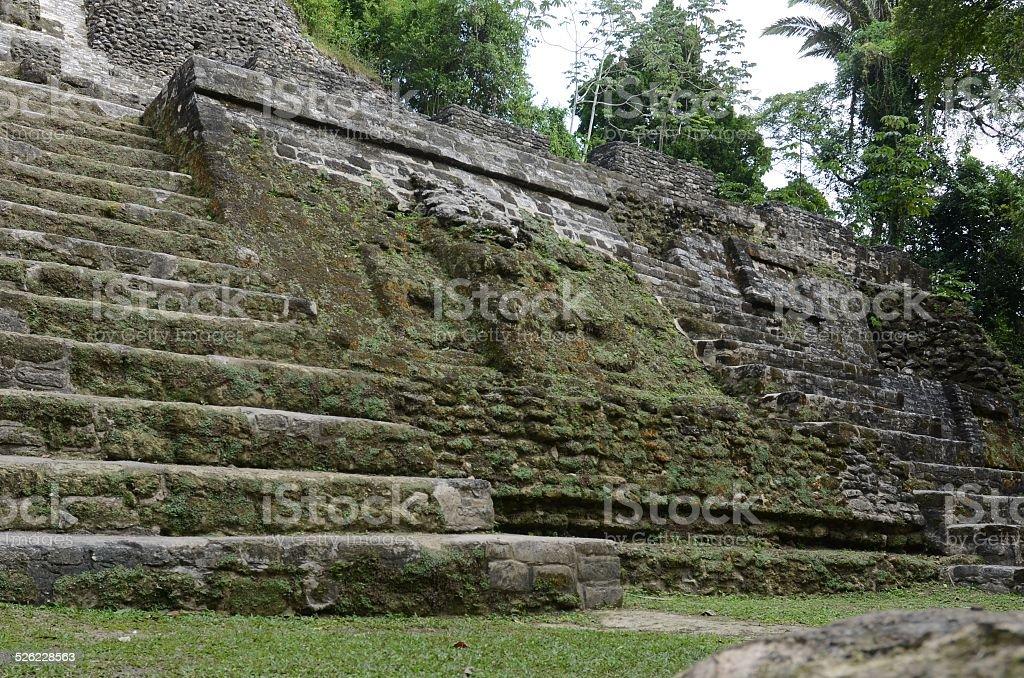 Jaguar Temple royalty-free stock photo