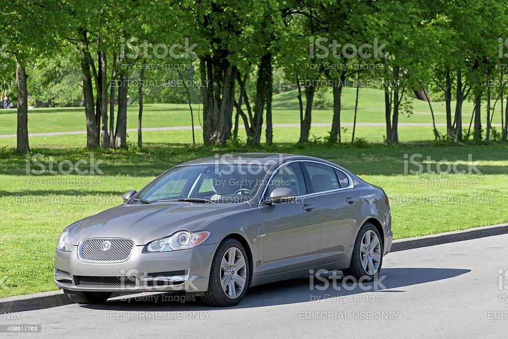 Jaguar XF royalty-free stock photo