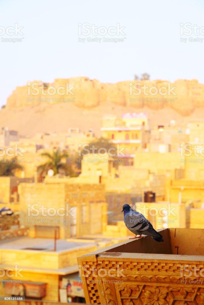 Jaisalmer Fort panorama at sunset, Rajasthan, India stock photo