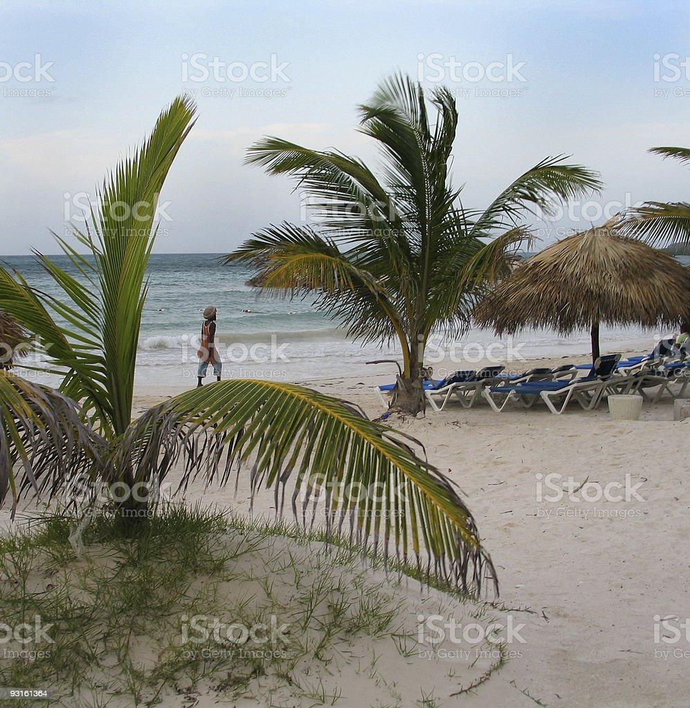 Jamaican Beach royalty-free stock photo