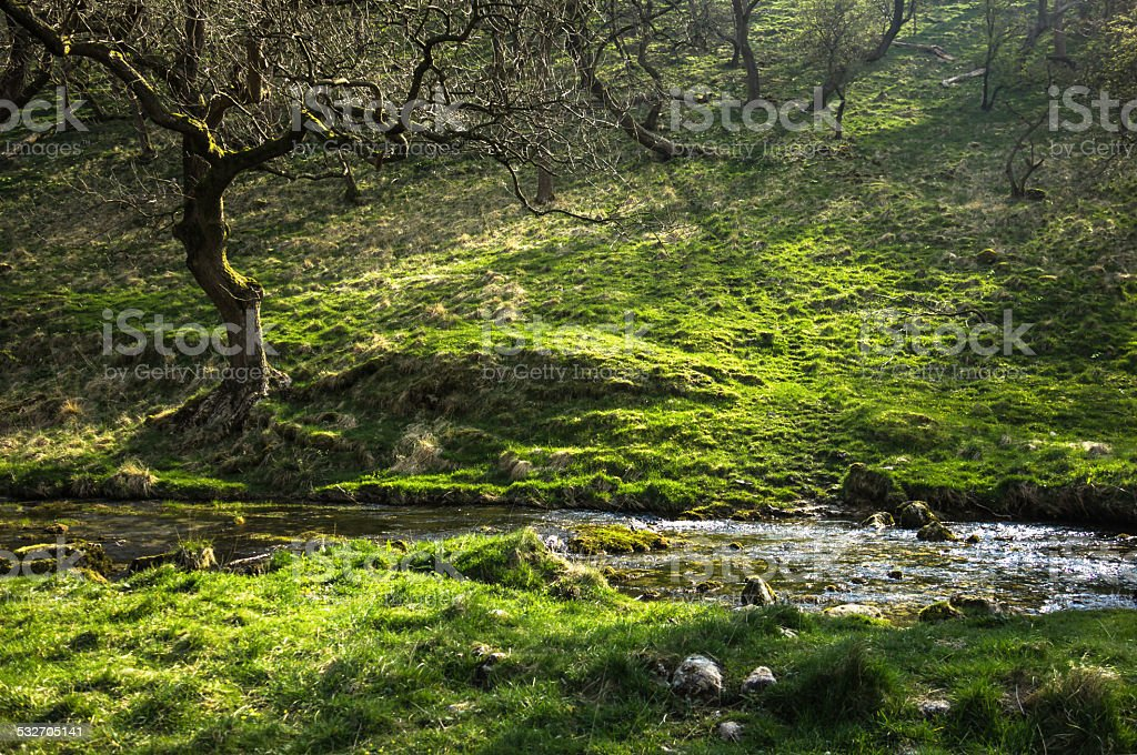 Janet's Foss stream in the Yorkshire Dales stock photo