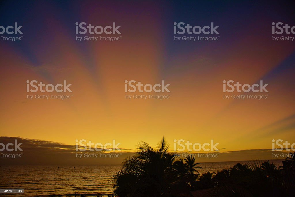 Jangadas head out to sea at dawn. stock photo