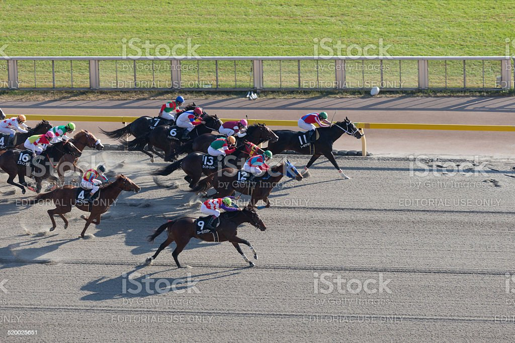 Japan Cup Race Day in Tokyo Racecourse stock photo