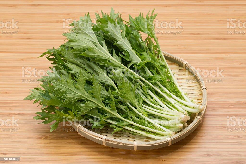 Japan of vegetables, mizuna stock photo