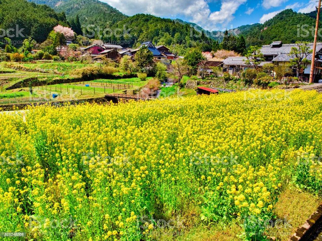 Japan scene23 stock photo