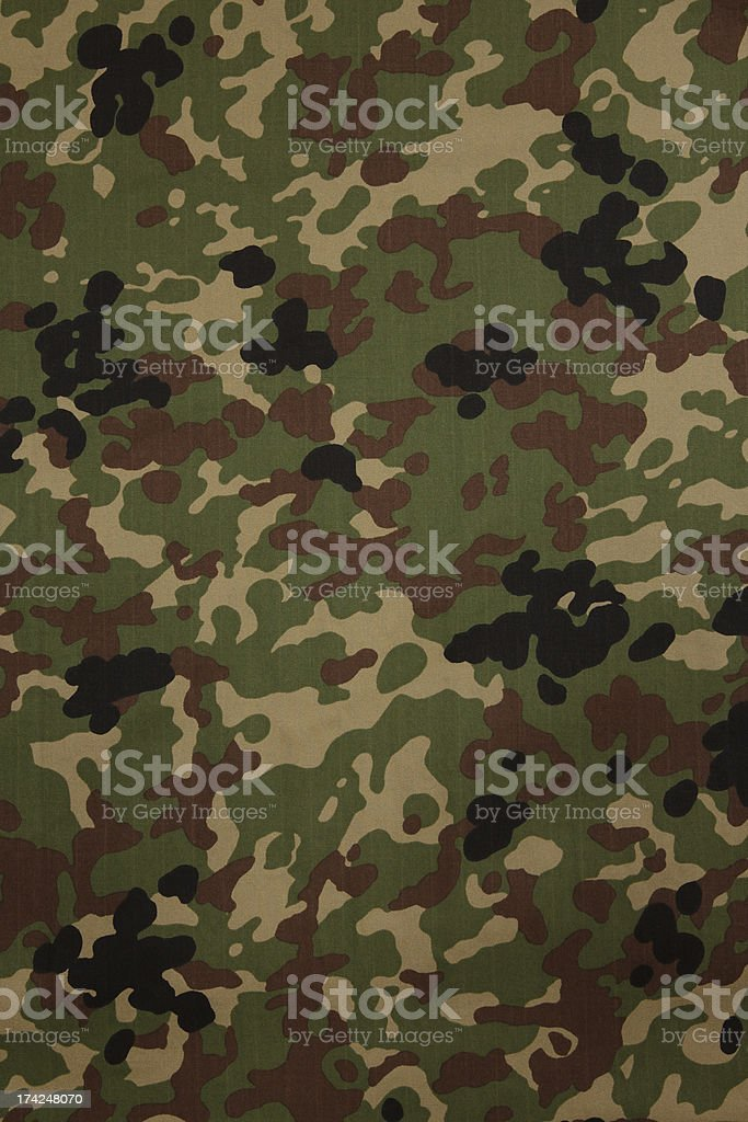 Japanese armed force flecktarn camouflage fabric texture backgro royalty-free stock photo