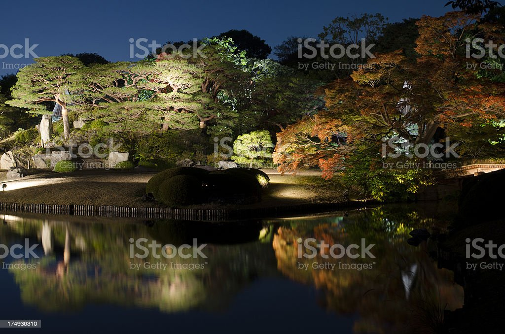 Japanese autumn in night royalty-free stock photo