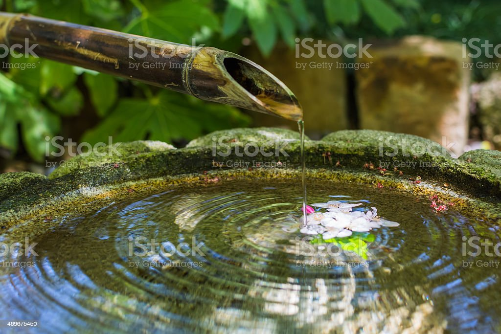 Japanese Bamboo Pipe Dripping Water stock photo
