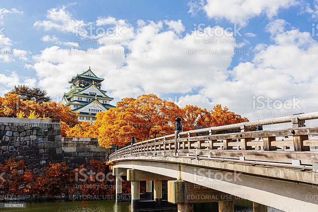 Japanese Castle with autumn leaves. stock photo
