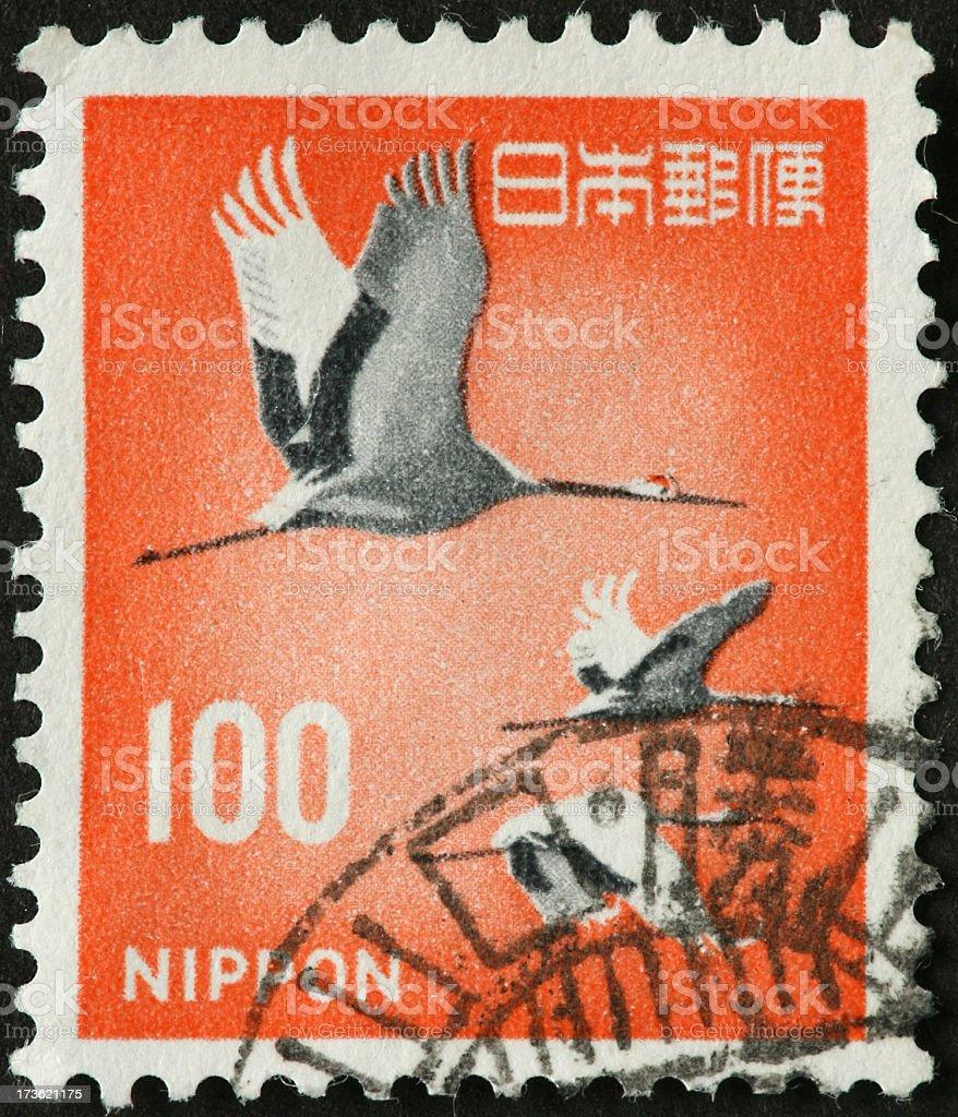 Japanese crane stock photo