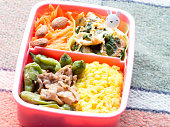 Japanese cuisine, foods contained a tiny lunch box called Bento