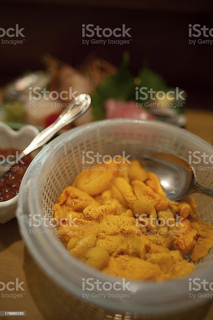 Japanese cuisine Uni Sashimi stock photo