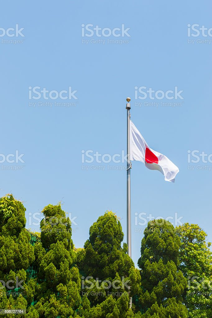 Japanese flag with sky and tree. stock photo